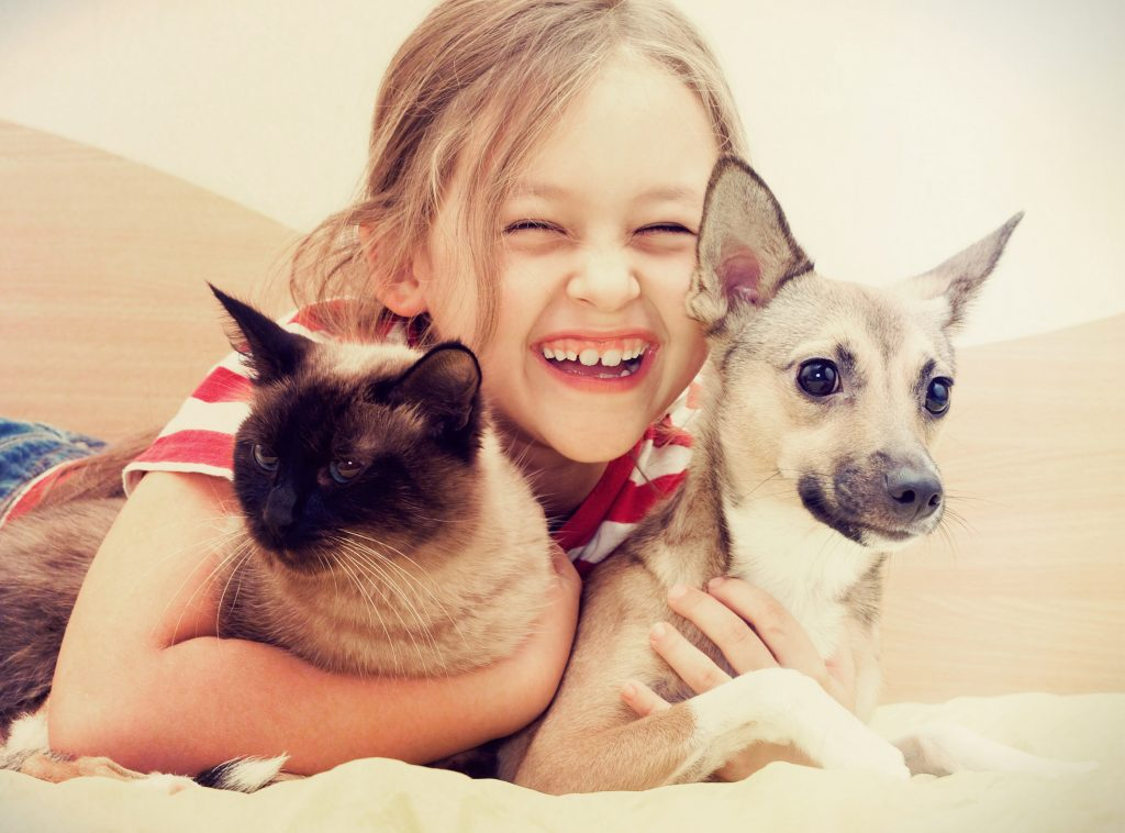 dog and cat with girl