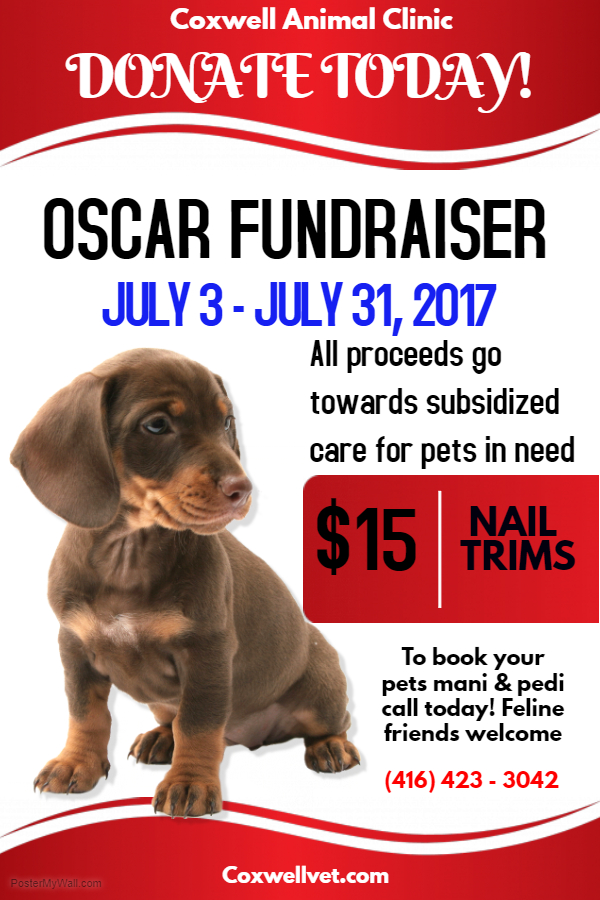 OSCAR Fundraiser July 2017 poster from Coxwell Animal Clinic