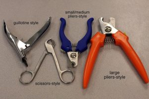 Different types of clippers for trimming dog nails