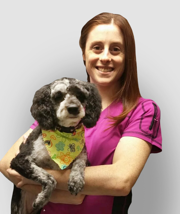 Aprille Fattore Professional Dog Groomer at Coxwell Animal Clinic