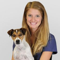 Dr. Monica Dawson Veterinarian at Coxwell Animal Clinic